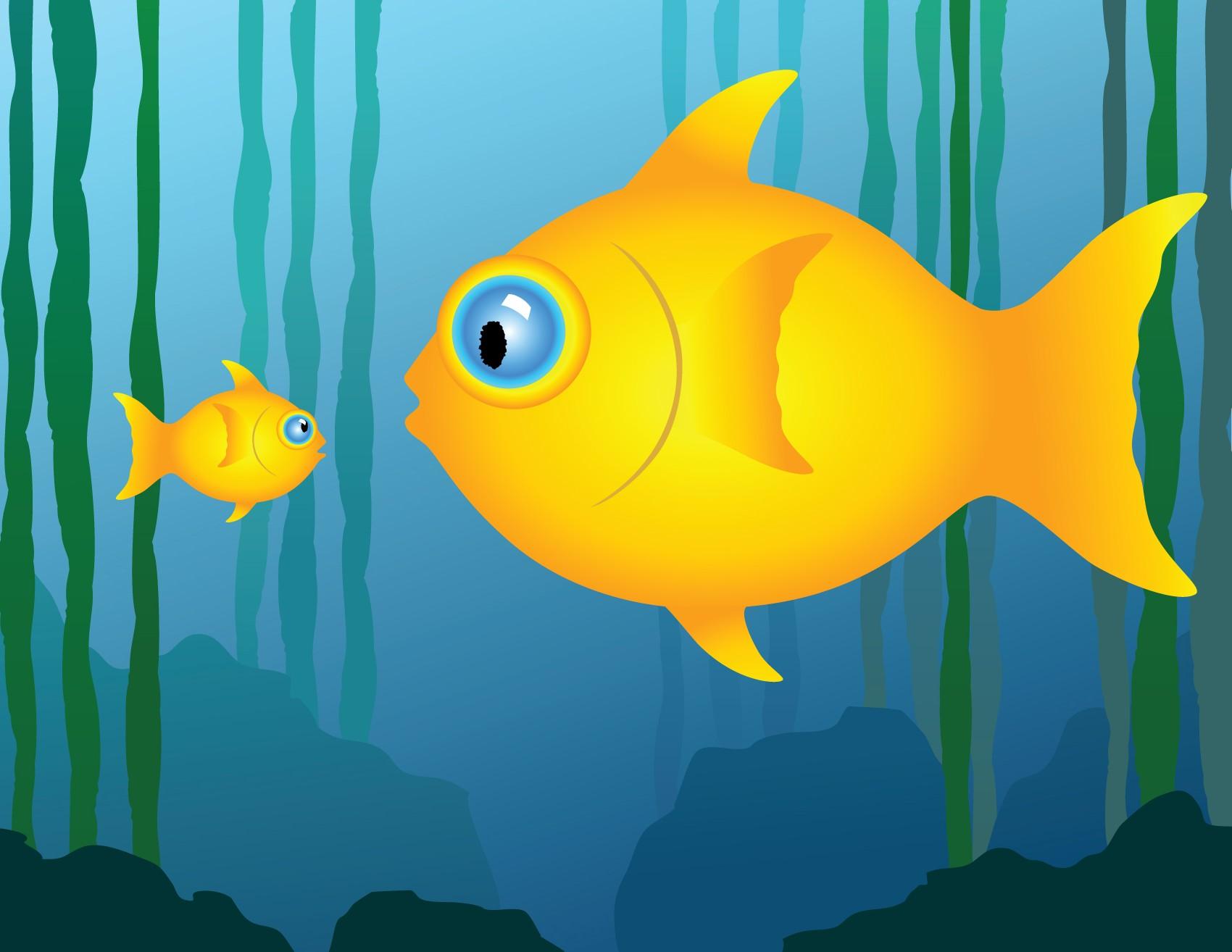 Cat Catches Big Fish